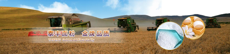 内蒙古牛羊养殖